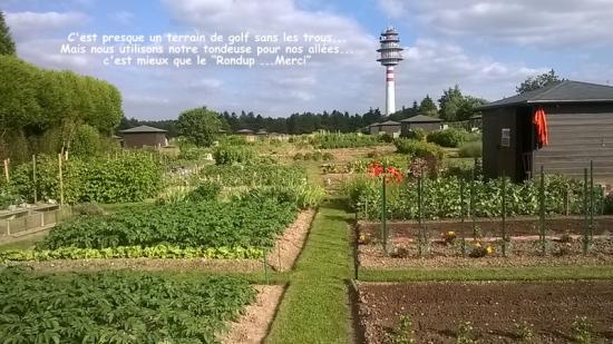 """A suivre pour un jardin """"Bio"""""""