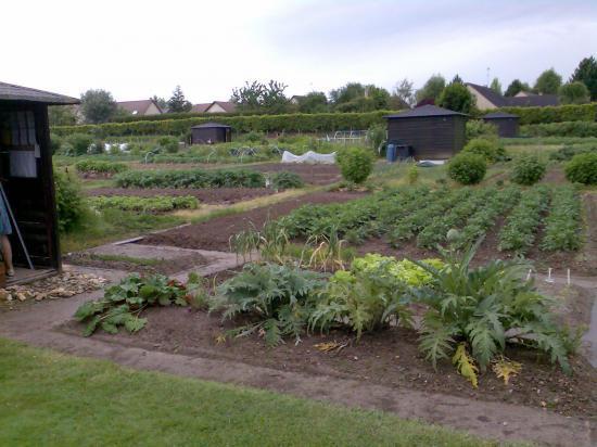 C'était un autre jardin en 2008