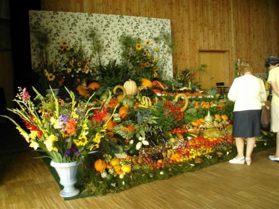 Expo du jardin- 2010