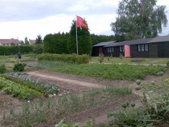 Jardin 2008