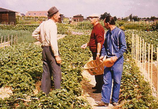 1983.De gauche à droite Henri Loeillet,Mon père,et Titi Batais
