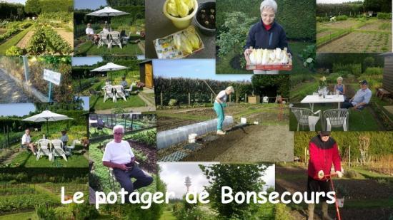Le Jardin de Bonsecours c'est notre potager