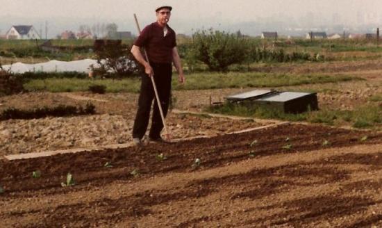 Photos de souvenirs du potager for Au jardin de mon pere camping